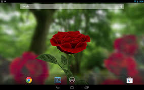 3DBirdsLiveWallpaperAppforAndroid  HD WallpaperFull Hd Live Wallpaper For Android Free Download