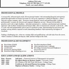 44 Inspirational Personal Profile Format In Resume Awesome Resume