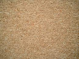 112 best Carpet images on Pinterest
