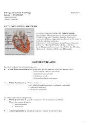 Fibrillazione Ventricolare Frequenza