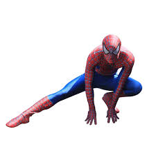 <b>New Spiderman Costume 3D</b> Printed Kids Adult Lycra Spandex ...