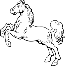 Image result for white cartoon horse