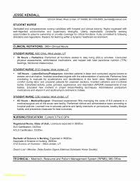 Travel Experience On Resume 1 Corporate Travel Consultant Resume