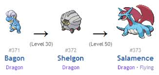Shelgon Evolution Chart 29 Expository Bagon Evolution