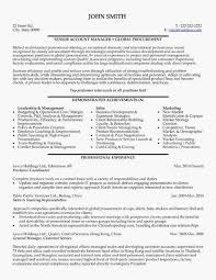 Program Manager Resume Examples Healthcare Project Manager Resumes