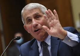 Fauci Says He Supports Vaccine Mandate for Air Travel