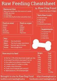 Bulldog Puppy Feeding Chart Raw Feeding Cheatsheet Raw Feeding For Dogs Raw Pet Food