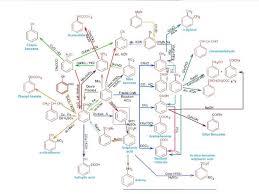 Organic Chemistry Chart Organic Chemistry Chart Basic