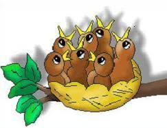 bird nest clipart. Interesting Bird Bird Nest Inside Clipart T