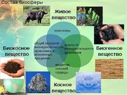 Контрольная работа Эволюция биосферы pib samara ru Эволюция биосферы 9 класс контрольная работа