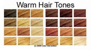 Hair Color Chart Warm Skin Tones Hair Colorful