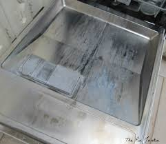 How To Clean The Inside Of A Stainless Steel Dishwasher The Pin Junkie How To Clean A Stainless Steel Dishwasher