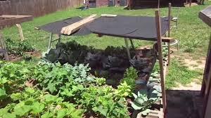 garden shade cloth. Garden Shade Cloth S
