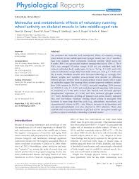 Molecular and metabolomic effects of voluntary running wheel activity on  skeletal muscle in late middle-aged rats – topic of research paper in  Biological sciences. Download scholarly article PDF and read for free