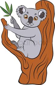cartoon wild s for kids cute small koala sits on the tree and holds leaves in the paw vector