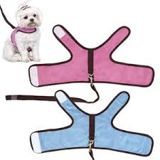 Dog Harness Pattern Custom His Hers Microsuede Soft Harness Leash Sets