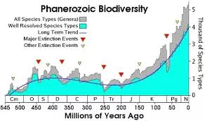 Extinction Timeline Chart Has The Diversity Of Species Increased Or Has It Been More