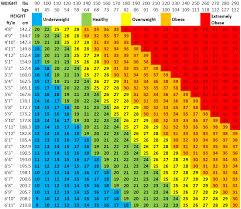 Bmi Chart Bmi Calculator Everest Granite Dallas