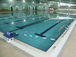 Olympic Size Swimming Pool Ultimate Cost Builders Three Beach Boys