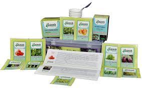 Kitchen Garden Kit Supeek Agrotech Hobby Kit For Kitchen Garden Amazonin Garden