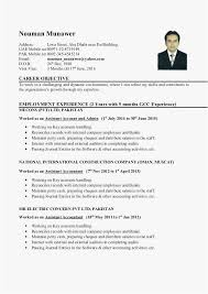 Junior Accountant Resume 2018 Ausgezeichnet Uae Accountant Resume