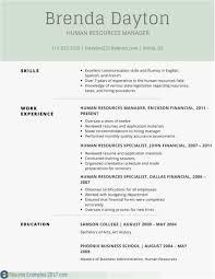 Server Resume Samples New Template Best New Resume Examples Best