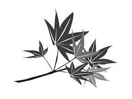 紅葉の白黒イラストを無料で使う方法簡単に挿絵にも利用できる 今
