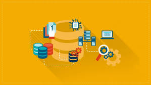 Master Data Management | Udemy
