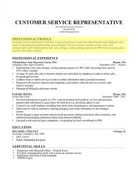 ... Marvelous What To Put In A Resume Profile The Most Brilliant Format Web  ...