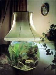 Good Aqua Design Globe Lamp Aquarium