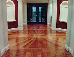 how to protect hardwood floors from dogs
