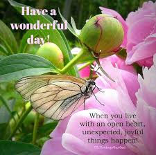 Good Morning Have A Nice Day Quotes Best of Lovely Day Quotes Tumblr Rakeback24me
