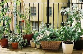 apartment patio garden. 23Jan Apartment Patio Garden A