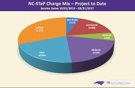 Nc Smart Chart Patient Portal Steps Toward Shortening Ed Wait Times For Mental Health