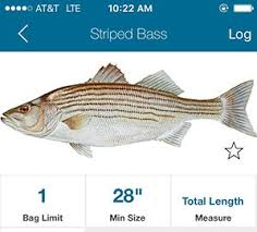 New Free App For Saltwater Fishing Regulations On The Water
