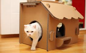 Cardboard House For Cats Adorable Cardboard Cat Home Ideas About Pet Life