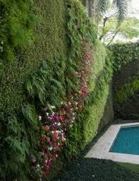 Small Picture Vertical garden Pinteres