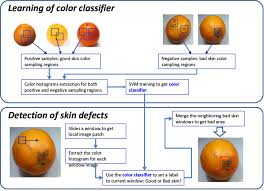 Flow Chart Of Apple Skin Defect Download Scientific Diagram