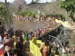 imagem de Taquarana+Alagoas n-13