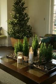 Tree Black Olive On Manzanita 8u2032 · Home Decorating Resources Home Decor Trees