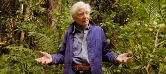 on the poetic legacy of w s merwin