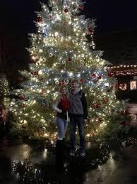Akron Ohio Zoo Lights Stan Hywet Christmas Tree Date Idea Akron Ohio