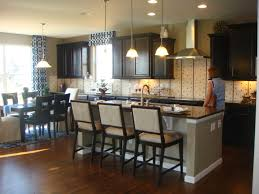 Espresso Painted Cabinets Kitchen Cabinets White Jelly Cabinets Acrylic Drawer Pulls And