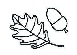Acorn Coloring Pages And Squash Free Printable Coloring Pages