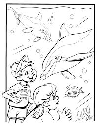Kinderpleinen Dolfijnen Kleurplaten Beste Kleurplaten Van