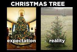 Christmas Tree Quotes Awesome Christmas Tree Expectation Reality Picture Quotes