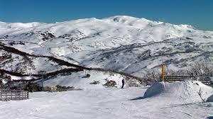 Skiing In Australia Wikipedia
