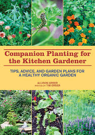 Kitchen Gardening Tips Companion Planting For The Kitchen Gardener Tips Advice And