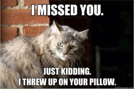 Miss You | Meme My Day via Relatably.com