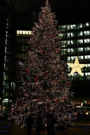 ... Large Size of Christmas: Christmas Fabulous Xmas Tree Shop Picture  Ideas Online Hours Skinny Trees ...